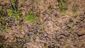 Struttura del fango marrone bagnato della sporcizia fotografia stock libera da diritti