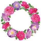 Struttura del fiore con le rose su fondo bianco fotografie stock libere da diritti
