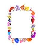 Struttura del fiore di disposizione isolata su bianco Fotografie Stock