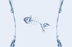 Struttura del Fishbone dell'acqua Immagini Stock Libere da Diritti