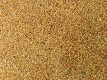 Struttura del fondo del cemento di Brwon Fotografia Stock Libera da Diritti