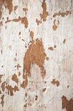 Struttura del fondo della calce Fotografia Stock