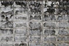 Struttura del fondo della parete del blocco in calcestruzzo Fotografie Stock Libere da Diritti