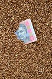 Struttura del fondo di grande mucchio di grano saraceno, fra quale può vedere una fattura di un hryvnia ucraino Il concetto del i Fotografie Stock Libere da Diritti