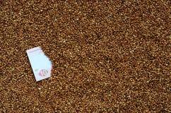 Struttura del fondo di grande mucchio di grano saraceno, fra quale può vedere una fattura di un hryvnia ucraino Il concetto del i Fotografia Stock Libera da Diritti