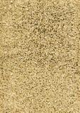 Struttura del fondo di scintillio dell'oro Fotografia Stock