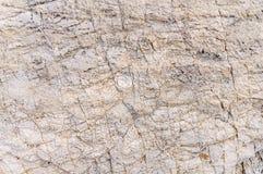 Struttura del fondo di struttura della pietra del mare Fotografie Stock Libere da Diritti