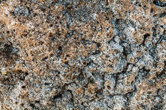 Struttura del fondo di struttura della pietra del mare Fotografia Stock Libera da Diritti