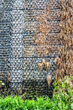 Struttura del fondo fatta di piccolo vaso e della foglia asciutta Immagini Stock Libere da Diritti