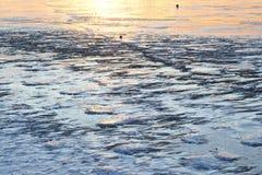 Struttura del ghiaccio fotografia stock libera da diritti