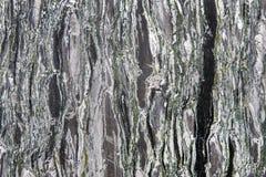Struttura del granito - gli strati di marmo progettano la lastra di pietra verde e grigia Fotografie Stock Libere da Diritti