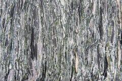 Struttura del granito - gli strati di marmo progettano la lastra di pietra verde e grigia Fotografia Stock Libera da Diritti