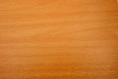 Struttura del grano di legno di faggio Fotografie Stock