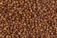 Struttura del grano saraceno Fotografia Stock