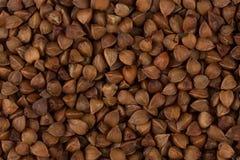 Struttura del grano saraceno Immagini Stock Libere da Diritti
