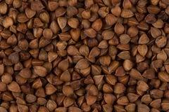Struttura del grano saraceno Fotografie Stock Libere da Diritti
