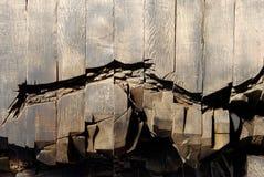 Struttura del legname Immagini Stock Libere da Diritti