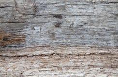 Struttura del legname galleggiante Fotografie Stock Libere da Diritti