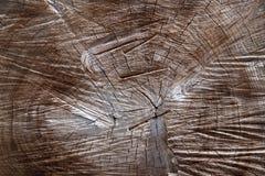 Struttura del legno Immagine Stock