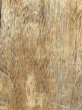 Struttura del legno Fotografie Stock