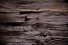 Struttura del legno della corteccia immagini stock