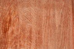 Struttura del legno di pino Fotografia Stock Libera da Diritti