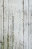 Struttura del modello della parete fotografie stock