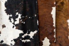 Struttura del modello della pelle della mucca Fotografie Stock
