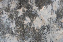 Struttura 0118 del muro di cemento fotografie stock