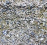 Struttura del muro di cemento Priorità bassa industriale Reticolo di Grunge Fotografia Stock