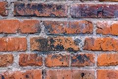 Struttura del muro di mattoni del garage Immagine Stock Libera da Diritti