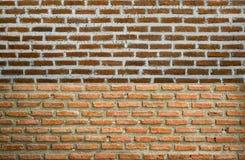 Struttura del muro di mattoni per fondo Fotografia Stock