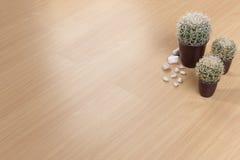 Struttura del pavimento di legno Immagine Stock Libera da Diritti