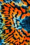 Struttura del pesce del guppy della coda Fotografia Stock