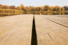 Struttura del primo piano di legno della priorità bassa Immagine Stock