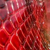 Struttura del primo piano genuino della pelle verniciata, impressa sotto la pelle un rettile rosso e rosa immagine stock
