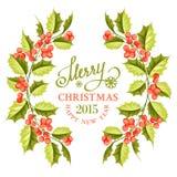 Struttura del ramo del vischio di Natale Fotografie Stock Libere da Diritti