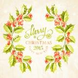 Struttura del ramo del vischio di Natale Fotografia Stock