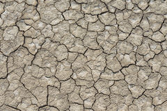 Struttura del suolo asciutto Immagine Stock