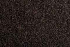 Struttura del tè Fotografia Stock