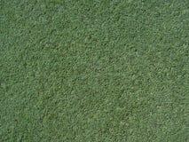Struttura del tappeto erboso Immagine Stock Libera da Diritti