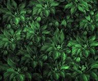 Struttura del tessuto con i fiori Fotografie Stock Libere da Diritti