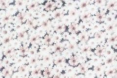 Struttura del tessuto con il modello di fiori Immagine Stock