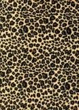 Struttura del tessuto della stampa del leopardo Fotografia Stock