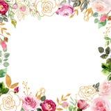Struttura dell'acquerello con le rose e gli elementi dorati fotografie stock libere da diritti