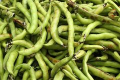 Struttura dell'alimento delle verdure dei fagioli di lima Immagine Stock Libera da Diritti