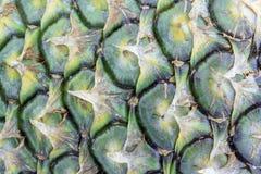 Struttura dell'ananas Immagini Stock Libere da Diritti