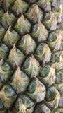 Struttura dell'ananas Immagini Stock