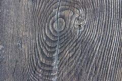 Struttura dell'anello di albero antico come fondo di legno Immagine Stock Libera da Diritti