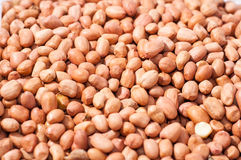 Struttura dell'arachide Fotografie Stock